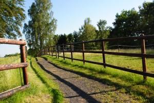 Weideflächen für die Pensionspferde